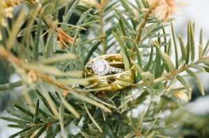 An Image of a Wedding Ring from a Manti Temple, Utah Wedding